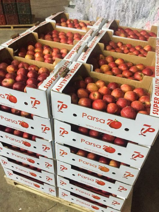 green way co apples